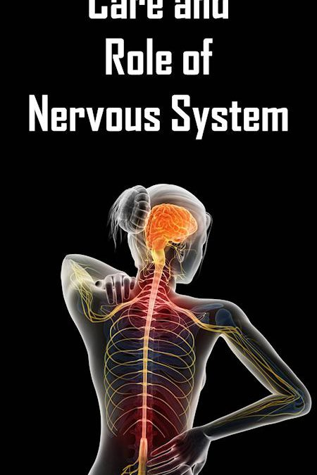 Chiropractic Care and the Role of the Nervous System