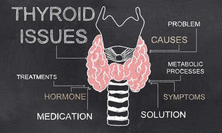 September Spotlight: Sluggish Thyroid, Sluggish You
